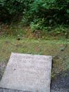 Plaque_with_blood_ditch